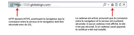 Exemple certificat DV
