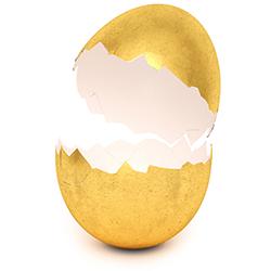 golden egg hatching.jpg