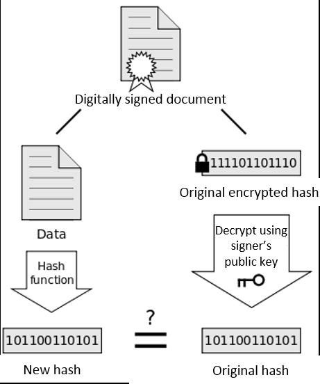Digital Signature Hash Check