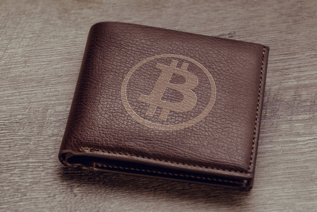 most common cryptocurrency wallets