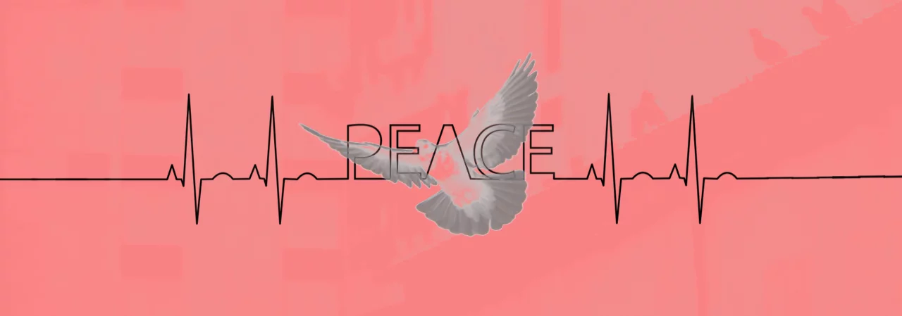 bleeping computer dove peace graphic