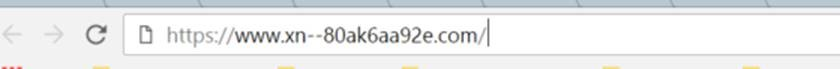 homograph cyber attack